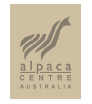 the-australian-alpaca-centre